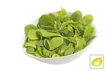 mieszanka sałat włoska baby leaf