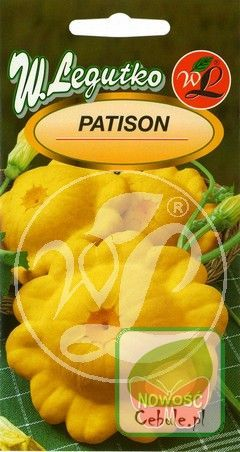Nasiona Dynia Patisson Orange
