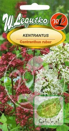 Nasiona Ostrogowiec Mix - Centranthus